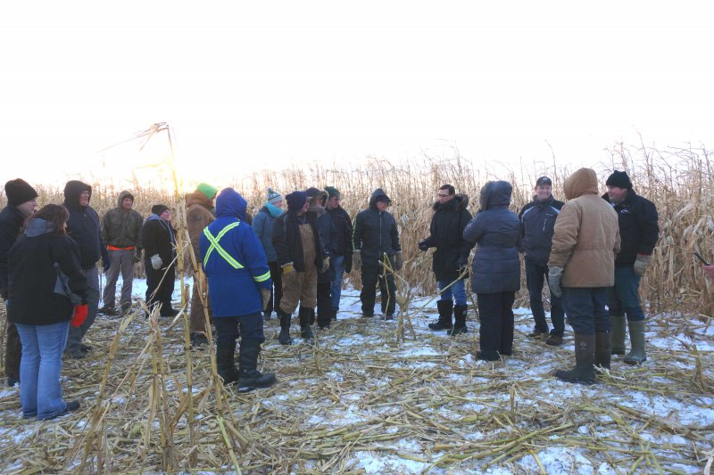 MBFI Winter Grazing Tour in corn paddock.jpg
