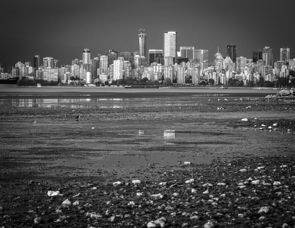 Sev.photography-Westend-Vancouver-B.C.jpg