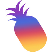 Instagram Pineapple.jpg