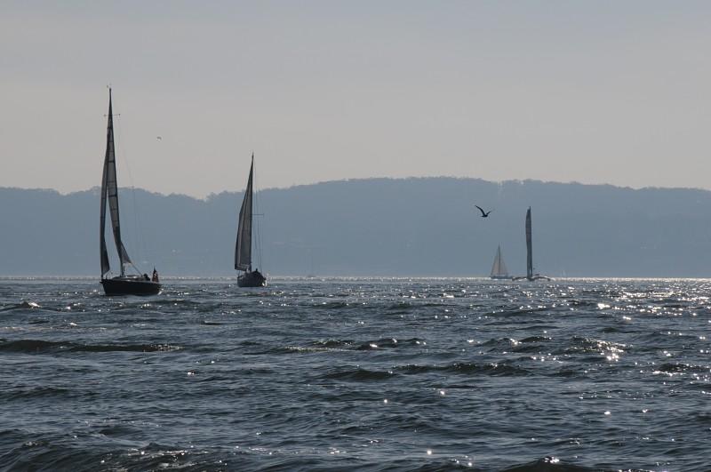 Charters_Sailing_opt.jpg