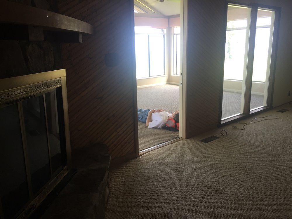 BEFORE: Den, Old Fireplace, & Tom Napping in Sunroom