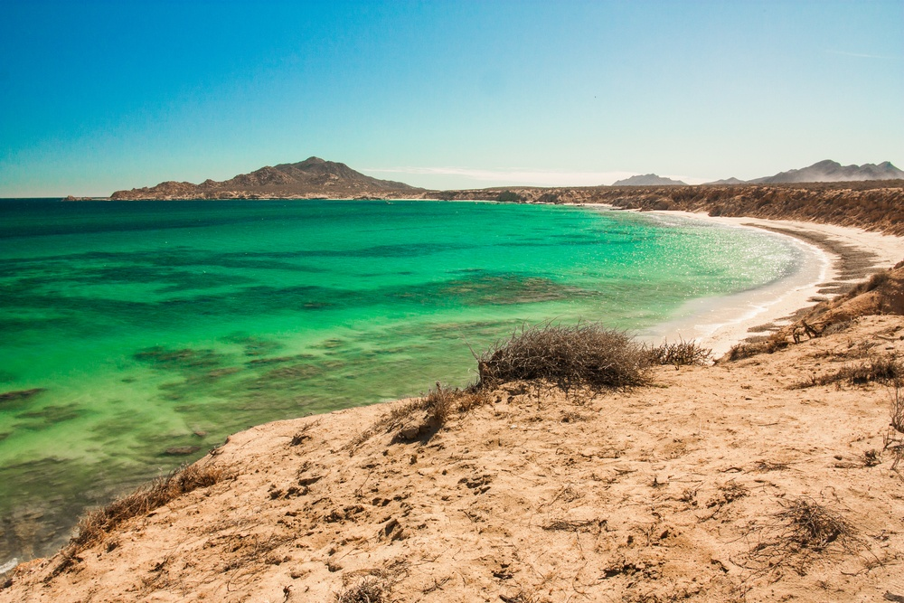A Guide to the Ultima Baja Road Trip -