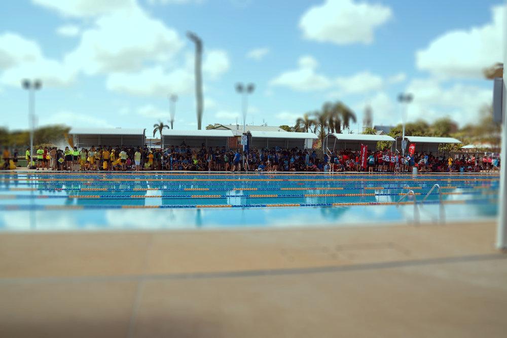 Swimming Carnival.jpg