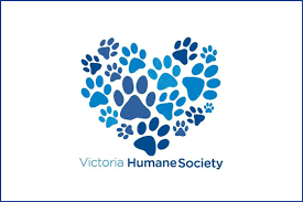 donation - The Victoria Humane Society is very important to me so if you would like to donate to them, in lieu of a gift to me, that would be awesome!