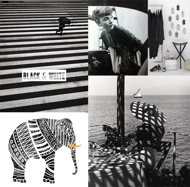 black and white moodboard
