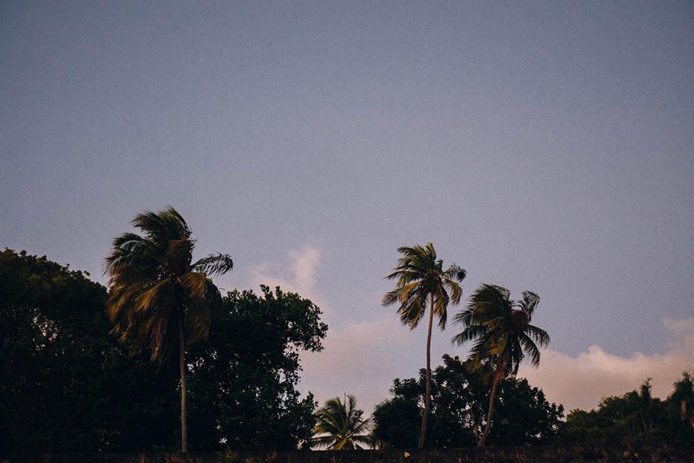 Puerto-Rico-Melissa-Alam-147.jpg