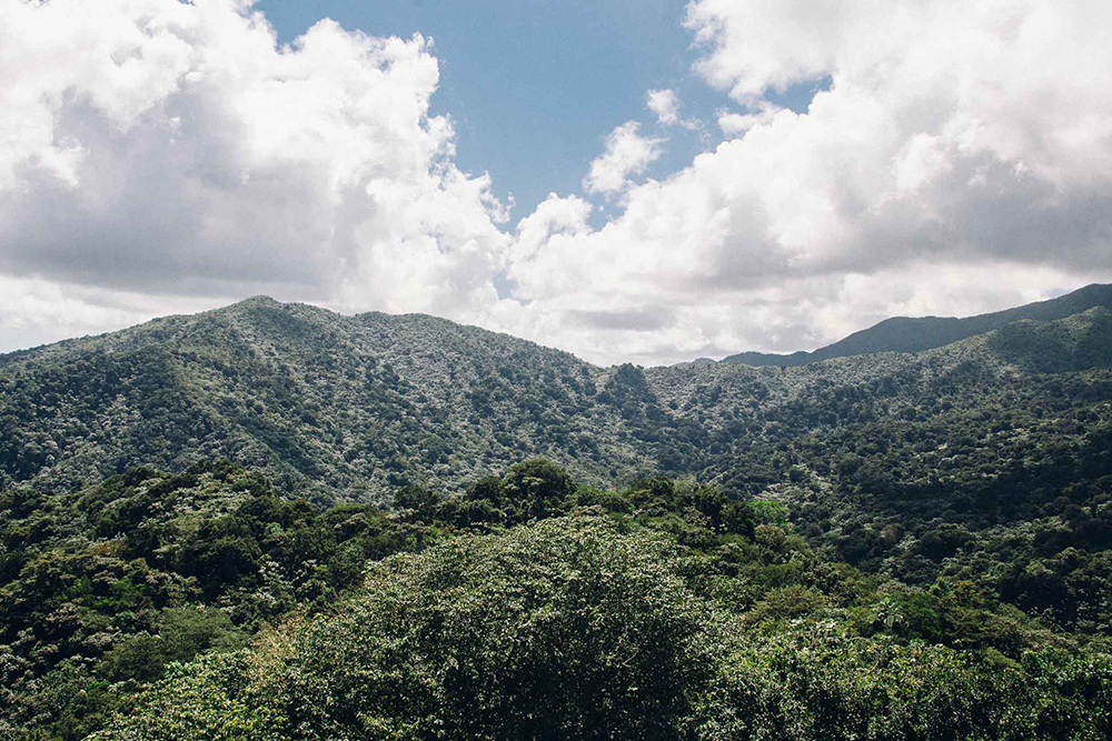 Puerto-Rico-Melissa-Alam-76.jpg