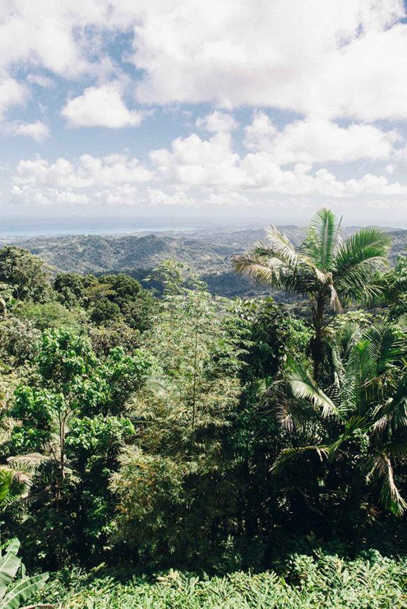 Puerto-Rico-Melissa-Alam-75-579x867.jpg