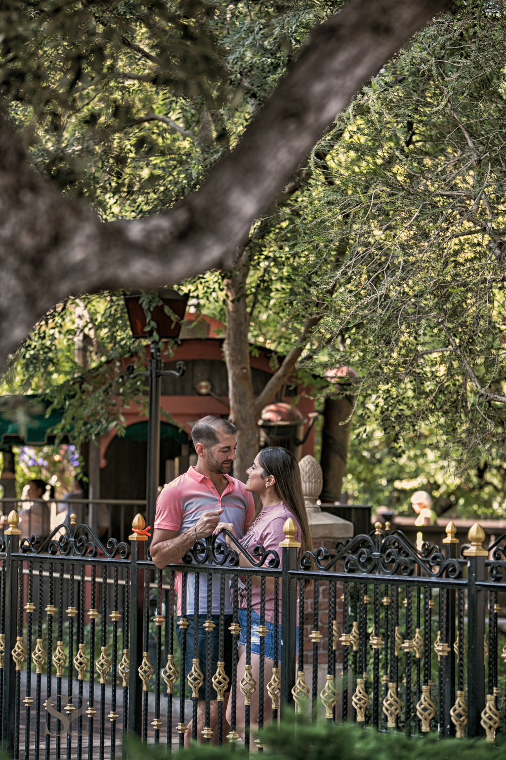 SARKISSTUDIOS-DISNEYLAND-PROPOSAL-7.JPG