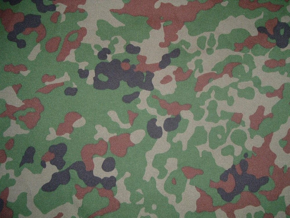 "Camouflage Type 2 (""Jieitai Dot""):   The Standard Camouflage pattern of the GSDF adopted in 1991 and used to today. The pattern consist of Dots based off image data of the average vegetation in Japan."