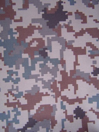 JASDF Digital Camouflage:   Air Self Defense Force pixelated digital camouflage pattern first introduced in 2009.