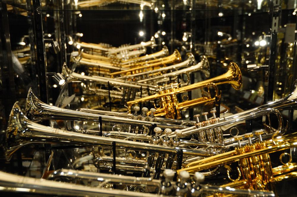 Brass - Triumphant Trumpets, Forceful French Horns, Terrific Trombones. These are just a few of the awesome instruments in the Brass Family. Integral voices in the orchestra and beyond.