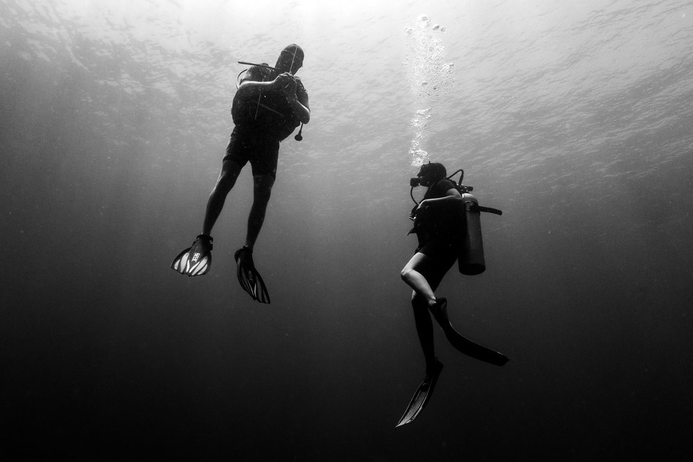 Collard Studios_Underwater and Drone Photography_Social Content-1003.jpg