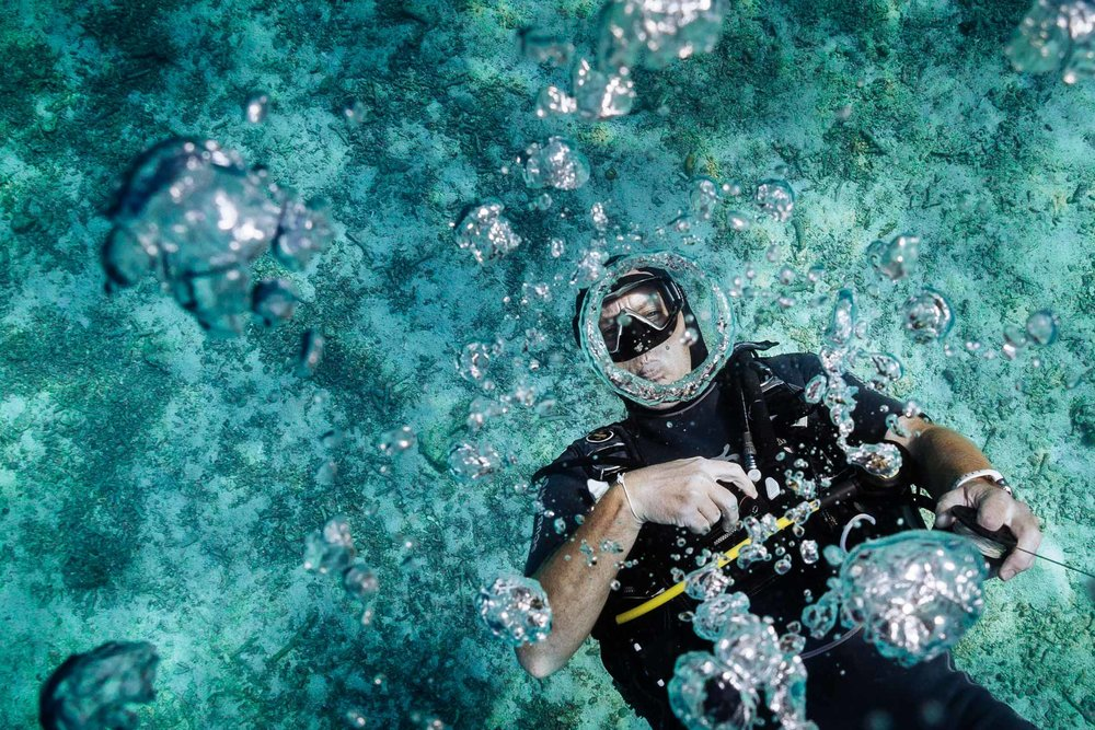 Collard Studios_Underwater and Drone Photography_Social Content-1007.jpg