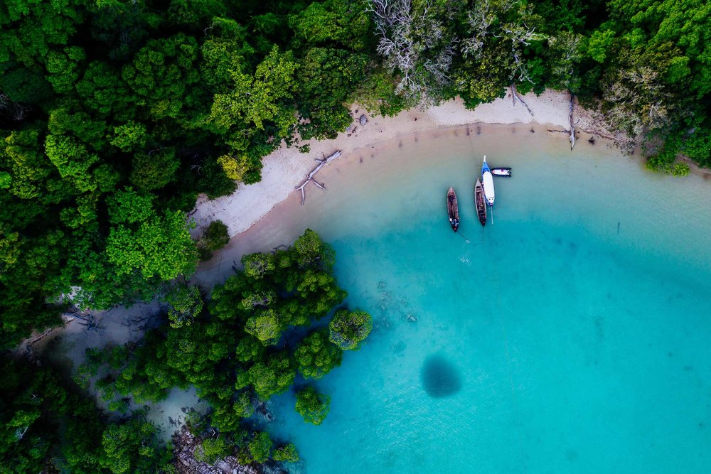 Collard Studios_Underwater and Drone Photography_Social Content-1008.jpg