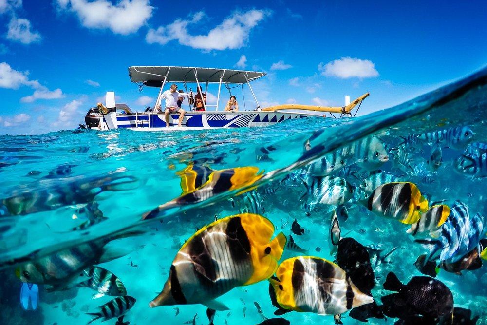 Drone & underwater -