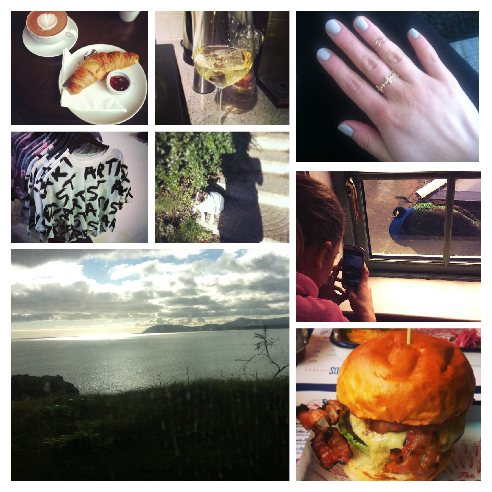 Week in Pics #4
