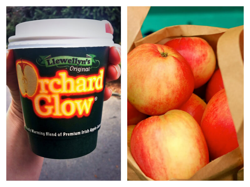 Orchard Glow