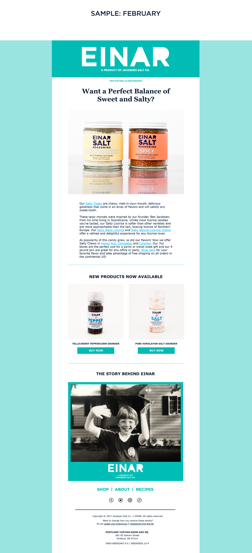 Einar Email newsletter templates_Page_2.png