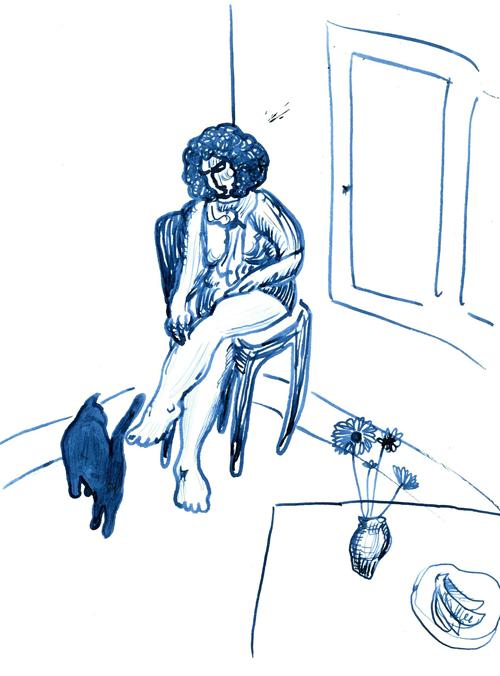 dr-bluecat.png