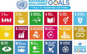 UN SDGs.png