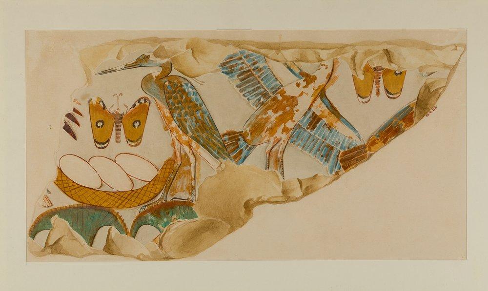 Nesting Birds, Tomb of Puyemre. Hugh R. Hopgood .