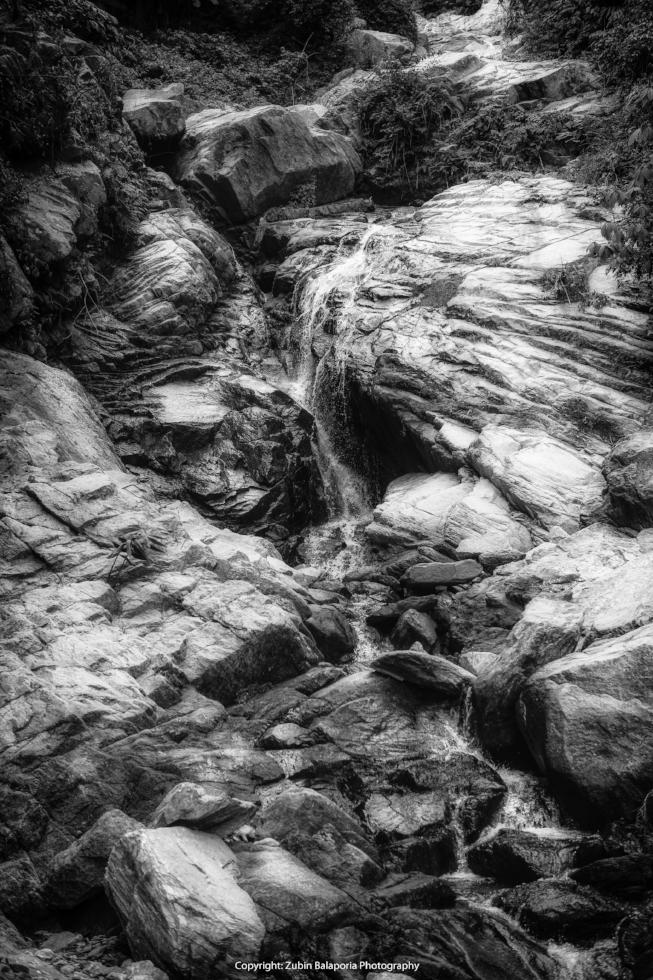 Waterface BW