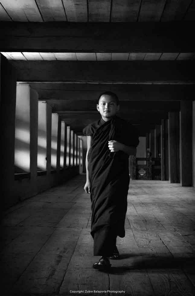 The Dalai Pillar Monk