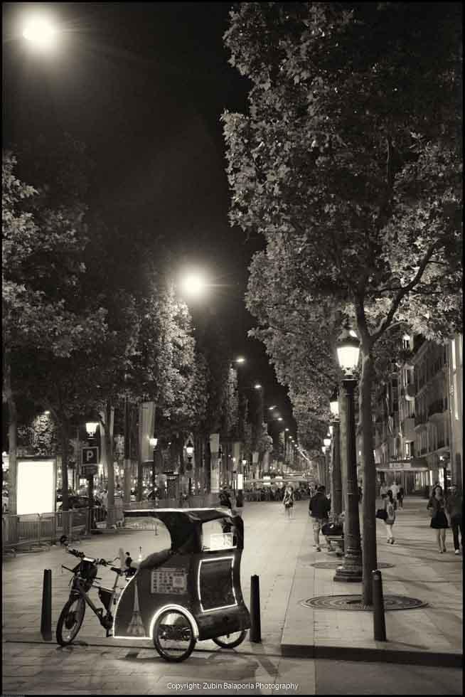 Quintessential Paris