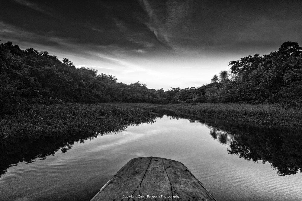 Canoe & Reeds on the Amazon River