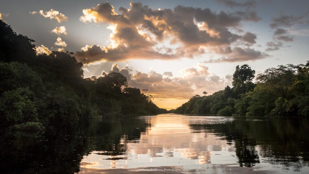 Jungle Sunset on the Amazon River