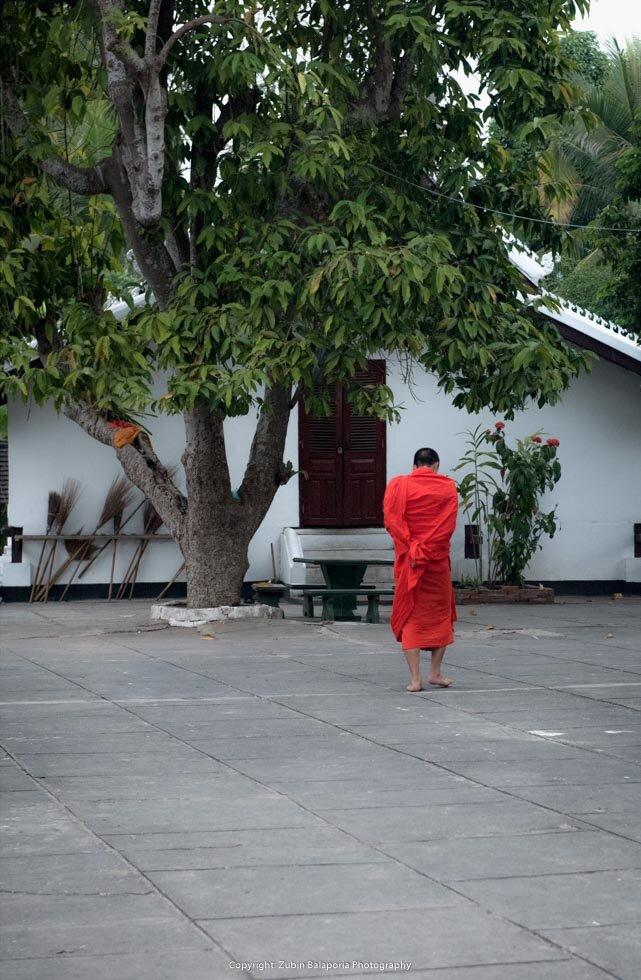Luang Prabang - Contemplation
