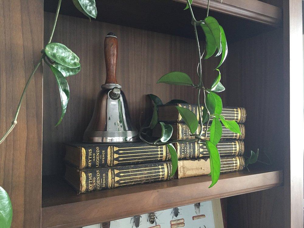 TV room shelf.jpg
