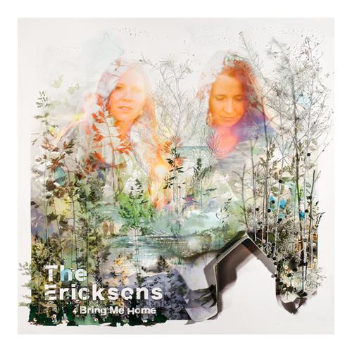 TheEricksons-BringMeHome.jpg