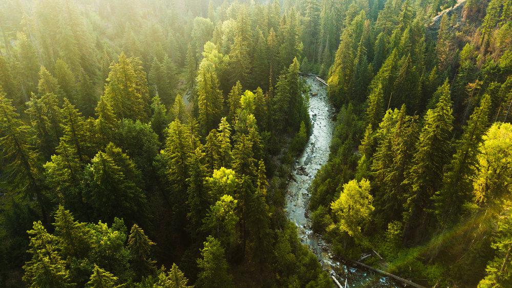 DJI Mavic Pro Drone Photograph of the Teanaway River near Cle Elum, Washington