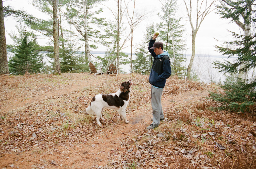 Couple Traveling Full Time With Their Adventure Dog Newfoundland