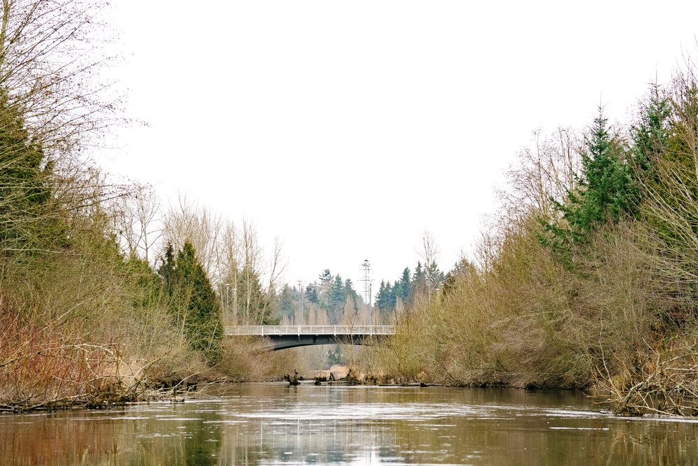 The Sammamish River from Seattle-based Conservation Photographer, Sara Montour Lewis