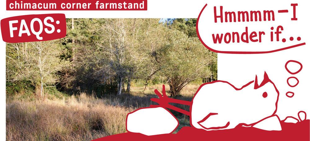 FAQs-cartoon-chimacum-corner-farmstand.jpg