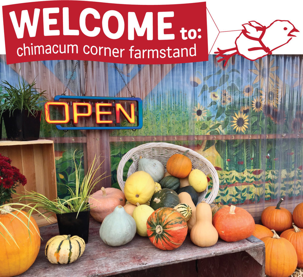 squash-and-open-sign-at-chimacum-corner-farmstand.jpg