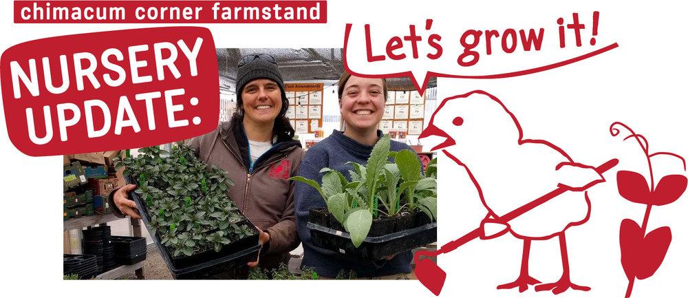 nursery-update-cartoon-karyn-chimacum-corner-farmstand