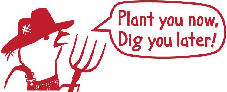Plant-you-now-cartoon.jpg