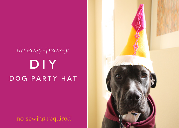 DIY Dog Party Hat
