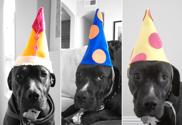 DIY Dog Party Hats