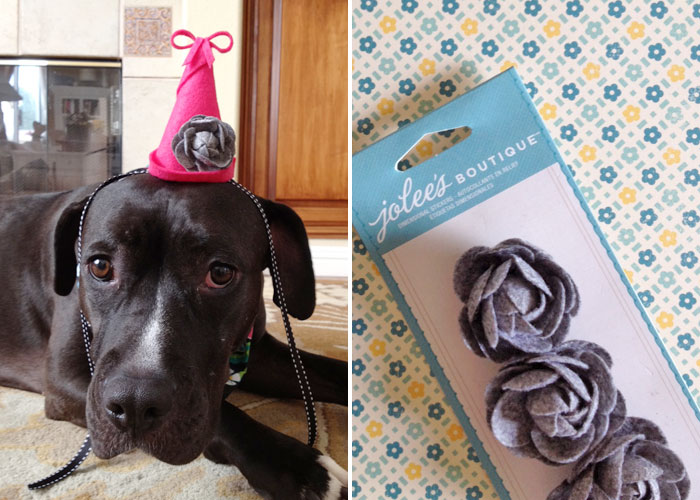 DIY small dog party hat | pink and gray felt flower hat