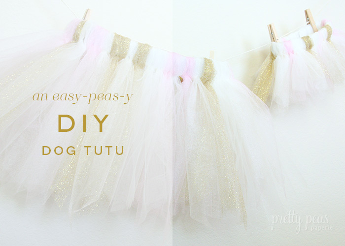 Tutorial for an easy DIY Dog Tutu