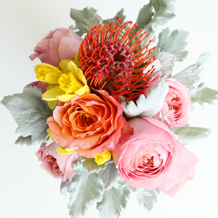 Garden roses, daffodils, protea, dusty miller