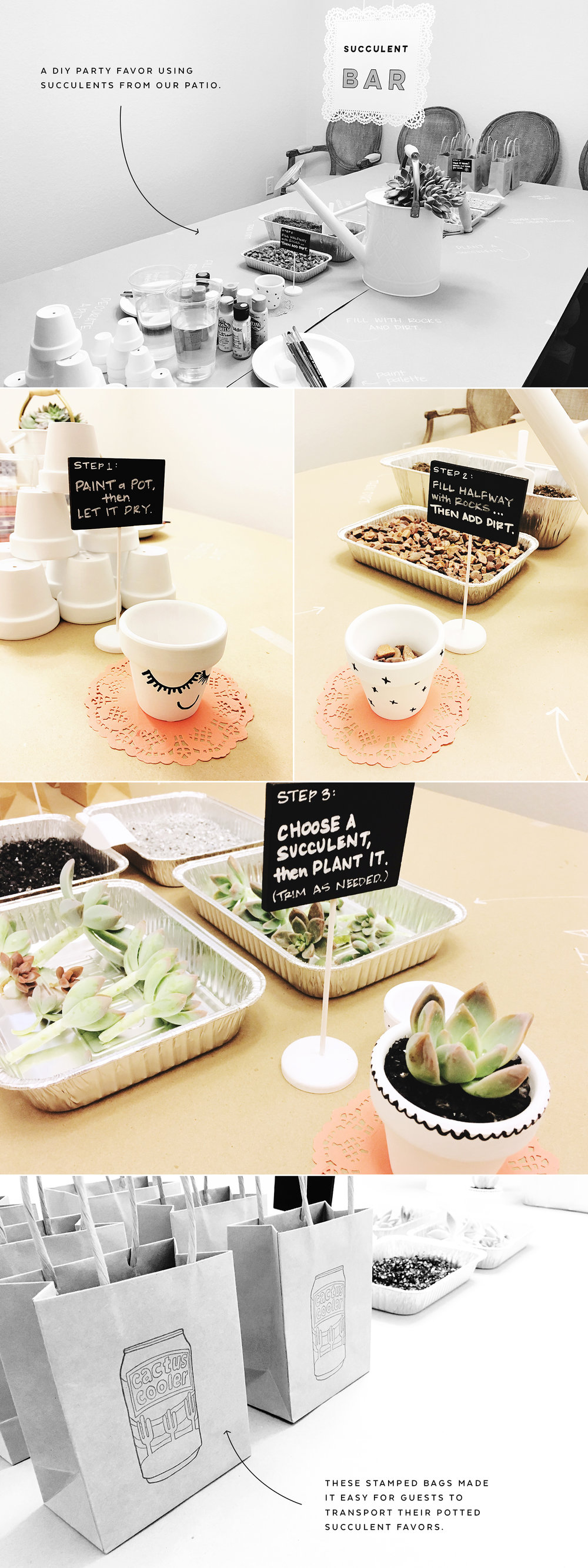 How to Set Up a Succulent Bar | Pretty Peas Paperie
