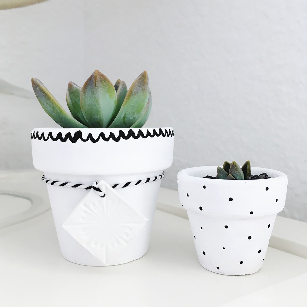 Mini Potted Succulent Bar | Pretty Peas Paperie