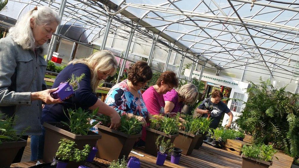 herbplanters.jpg