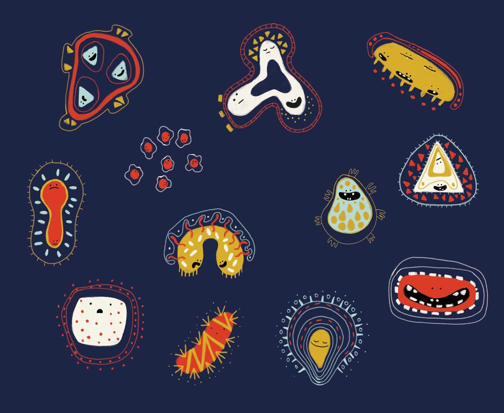 mireille-st-pierre-bacteria.jpg